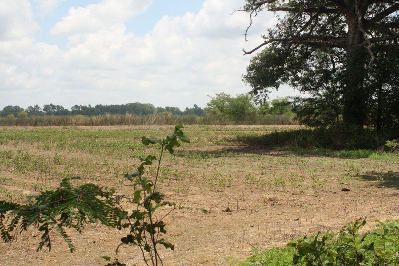 10-bordering crop field