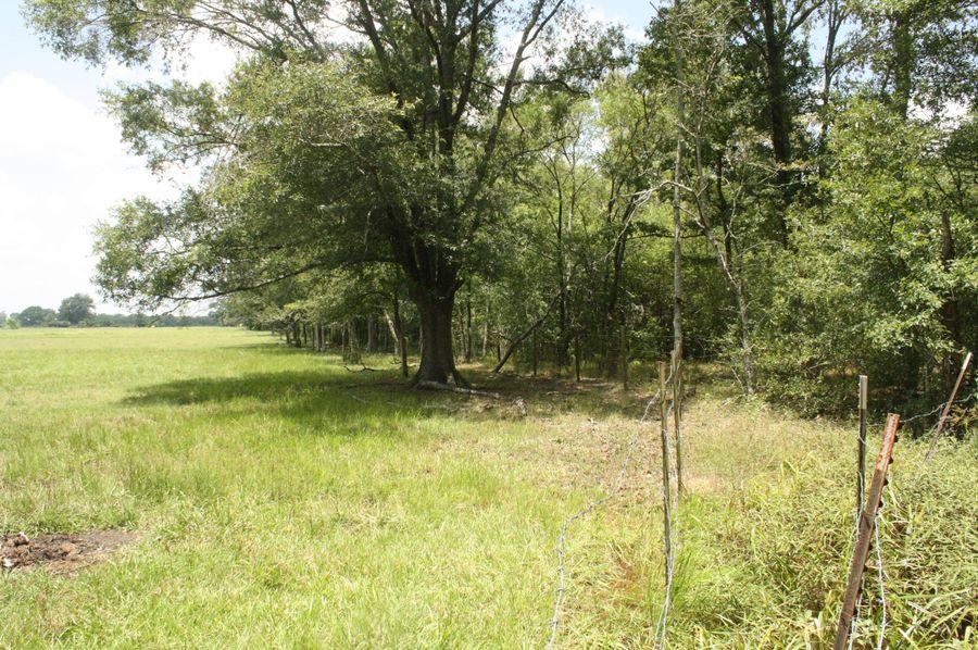 12-bordering pastureland