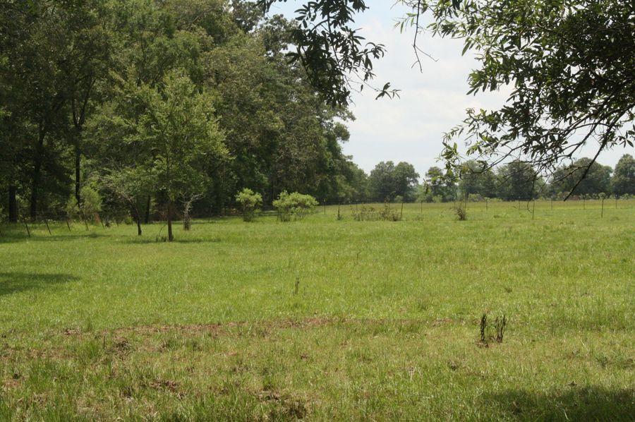 13-pastureland to the west