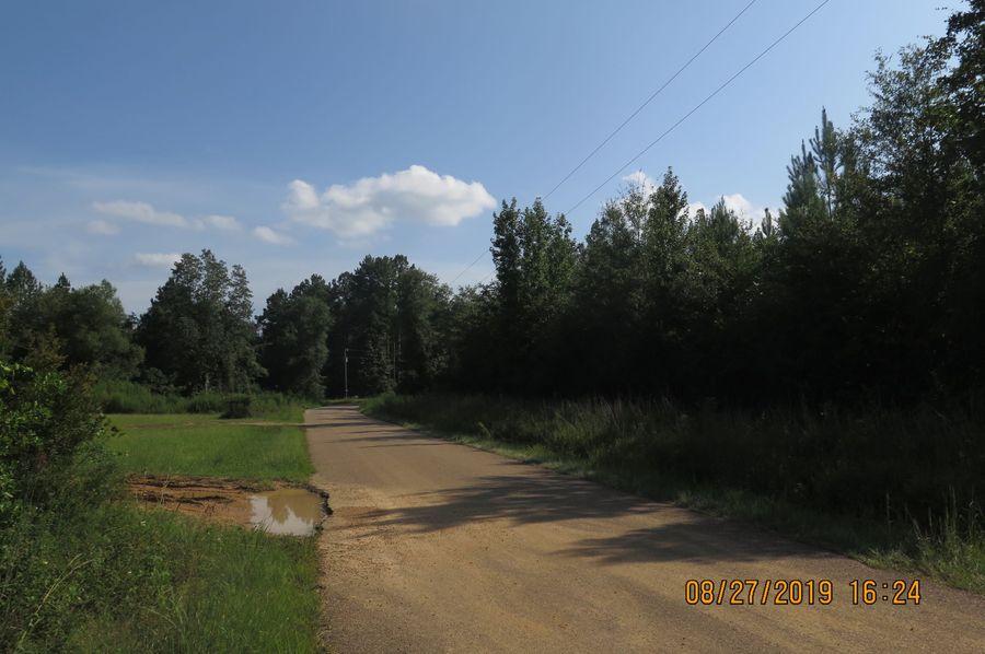 Img 2095