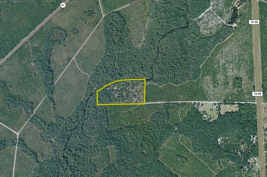 Dixie - 20 acres - bubar