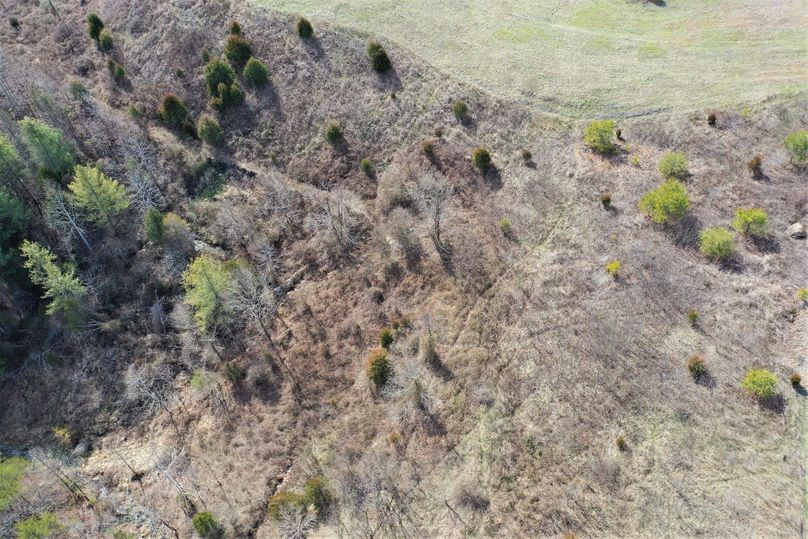 012 look at those deer trails!!!