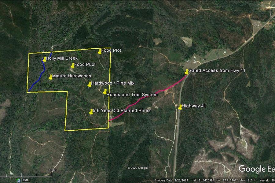 Aerial 6 approx. 129 acres monroe county, al