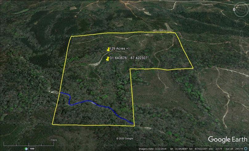 Aerial 3 approx. 129 acres monroe county, al