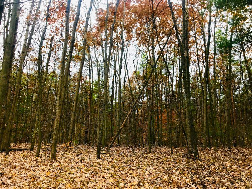 19 aspen grove n side of s lake