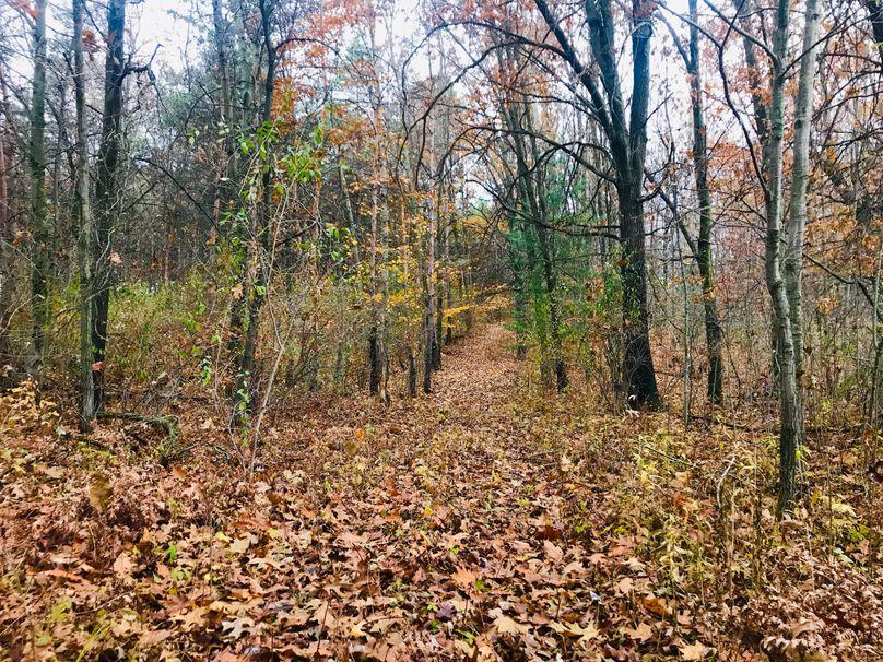 10 trail