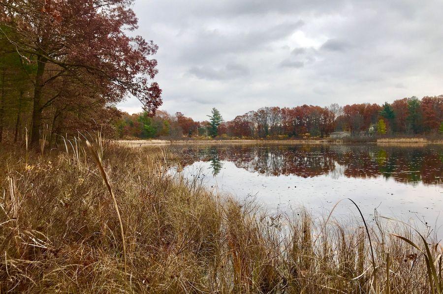 29 south lake
