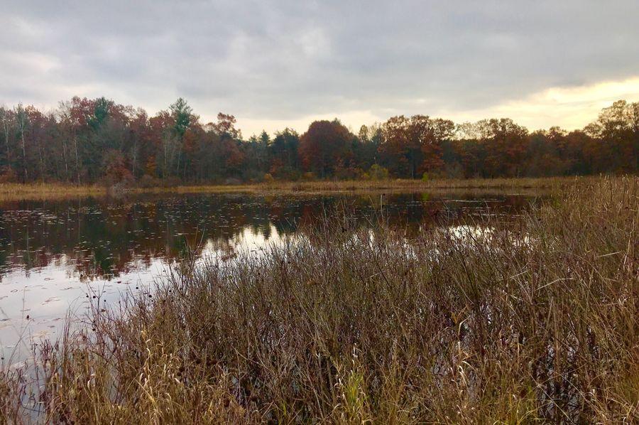 33 south lake