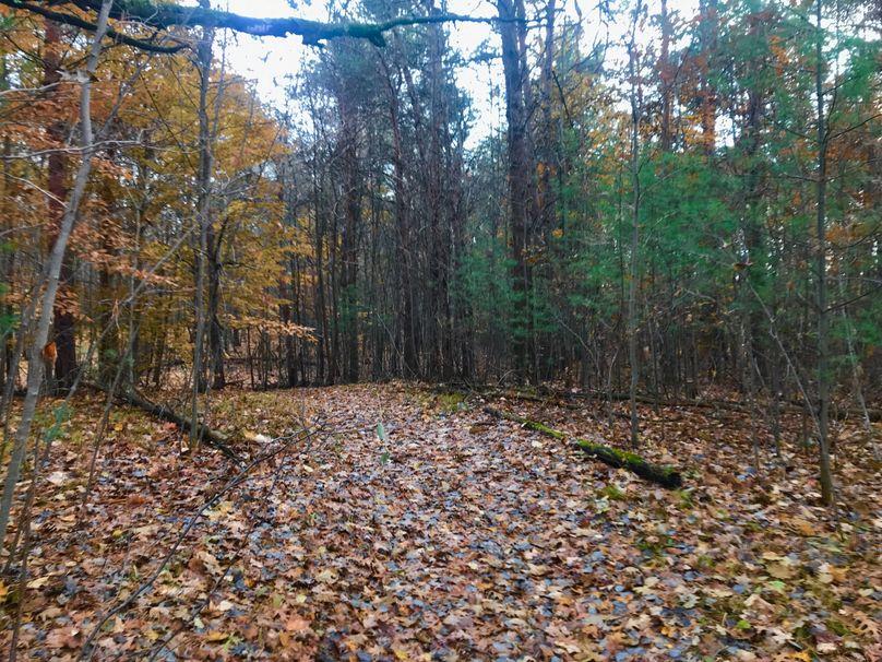 48 north trail