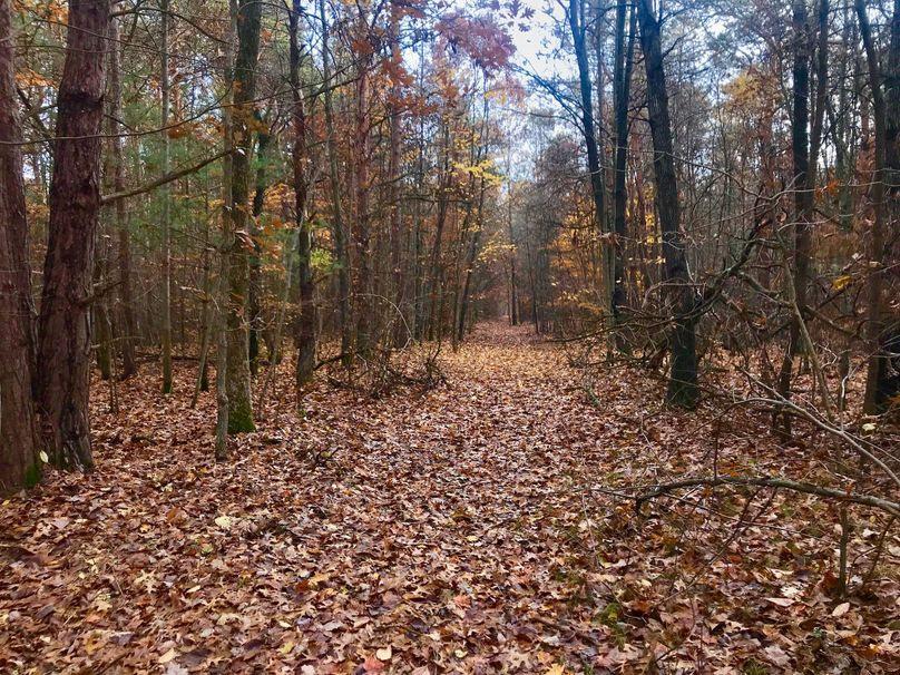 52 west trail