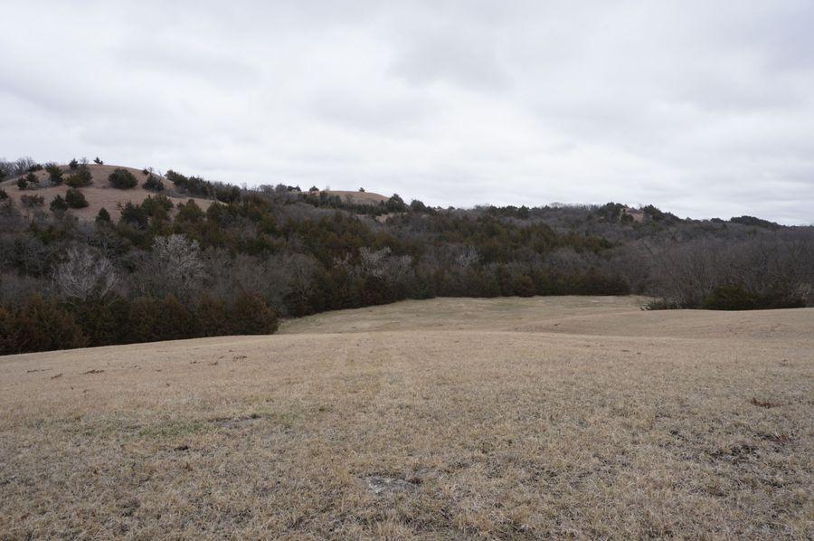 East end of hay field