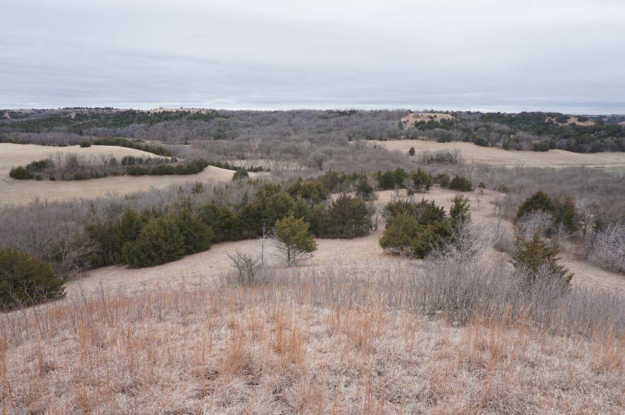 Looking south towards stony creek road