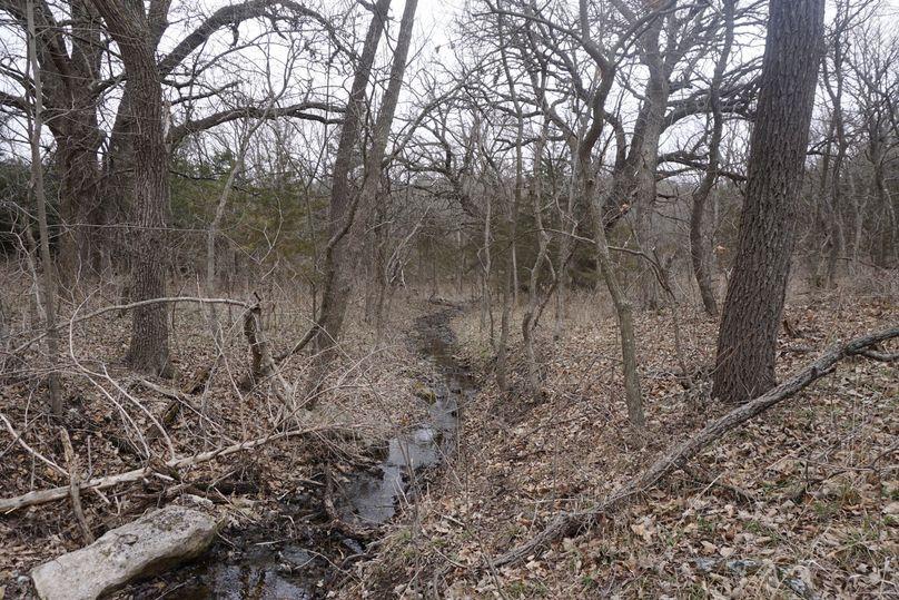 Spring feed creek