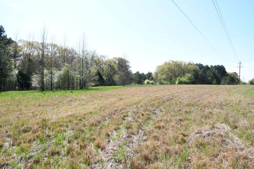 (3)big field