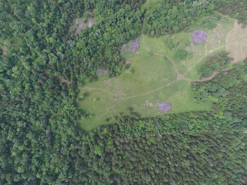 Multiple stands on this food plot location