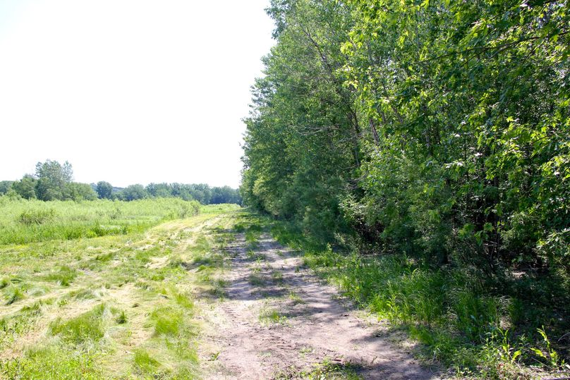 Pic 6 main access trail