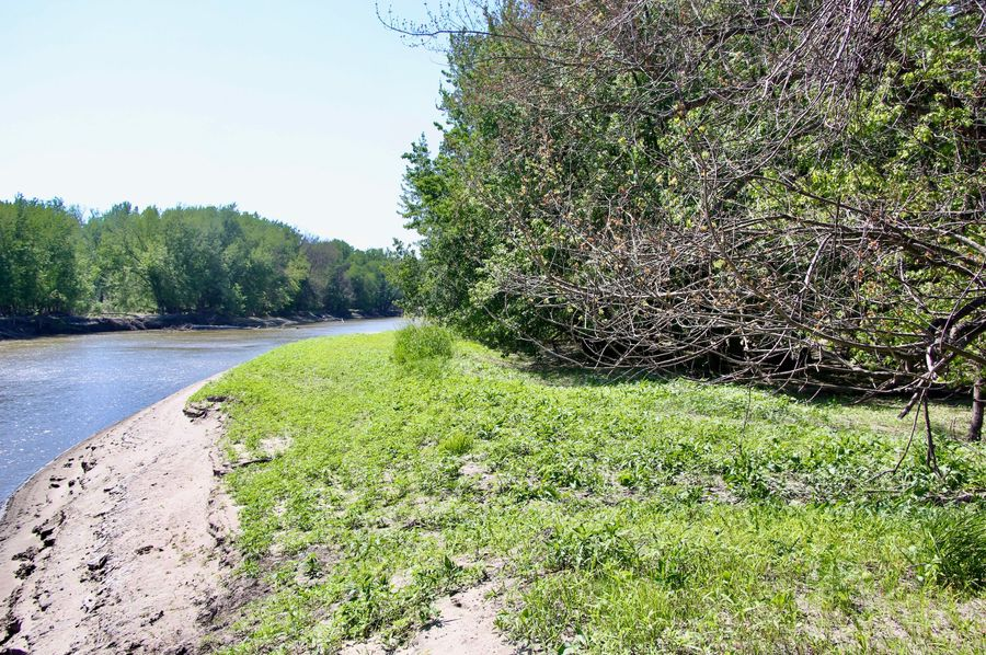 Pic 10 east boundary mn river
