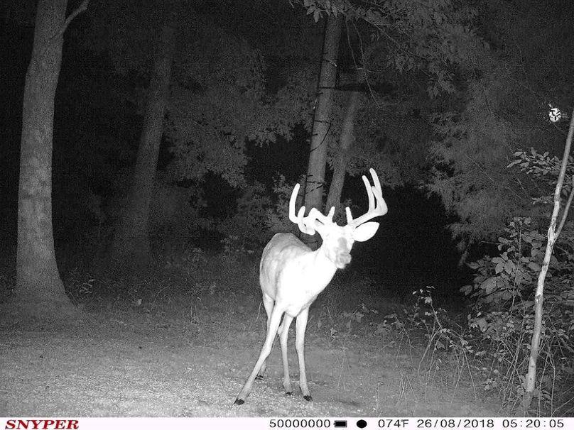 Trail cam23