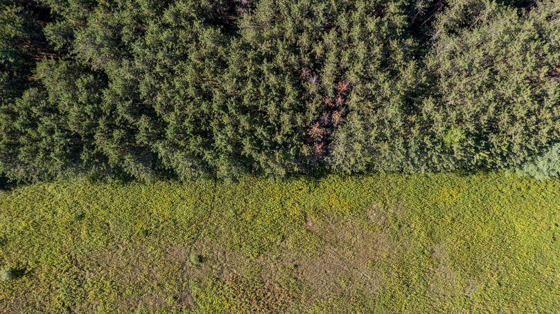 Empirestatelandco chemung 38.20 drone 10