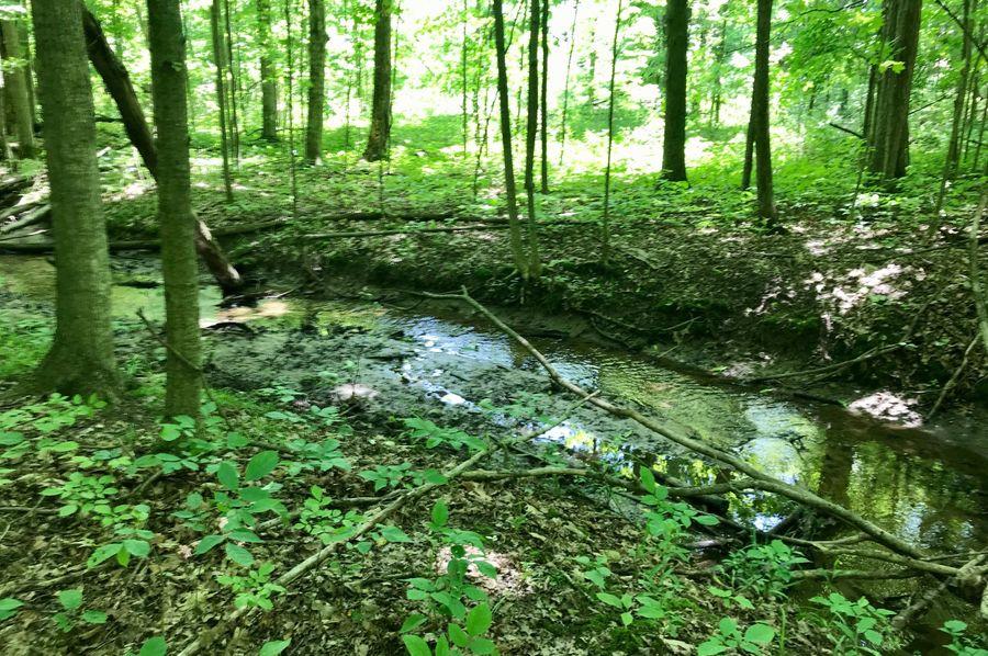 21 creek