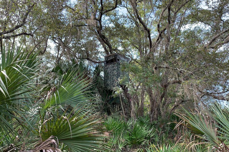 15. tree stand