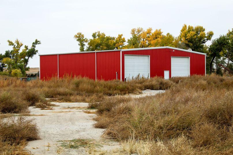 11 calving shed