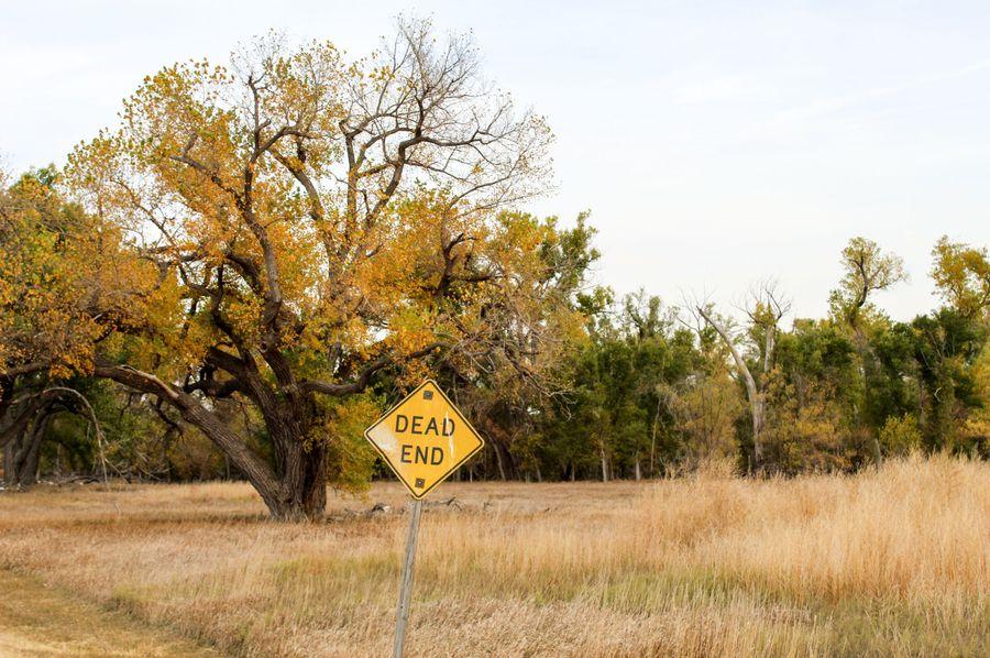 6 dead end road