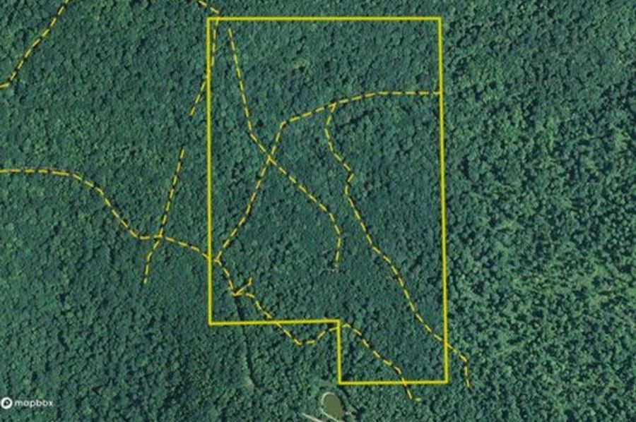 Graham 50 allegany maprite trails