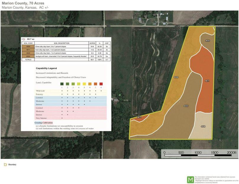 Marion schmidt 70 soils copy