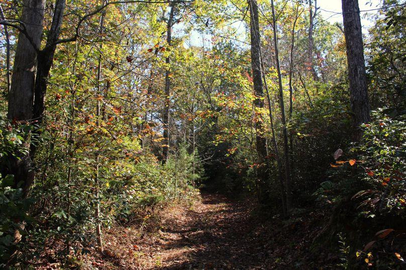 023 trail 2