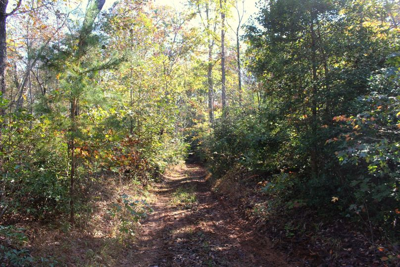 022 trail 1