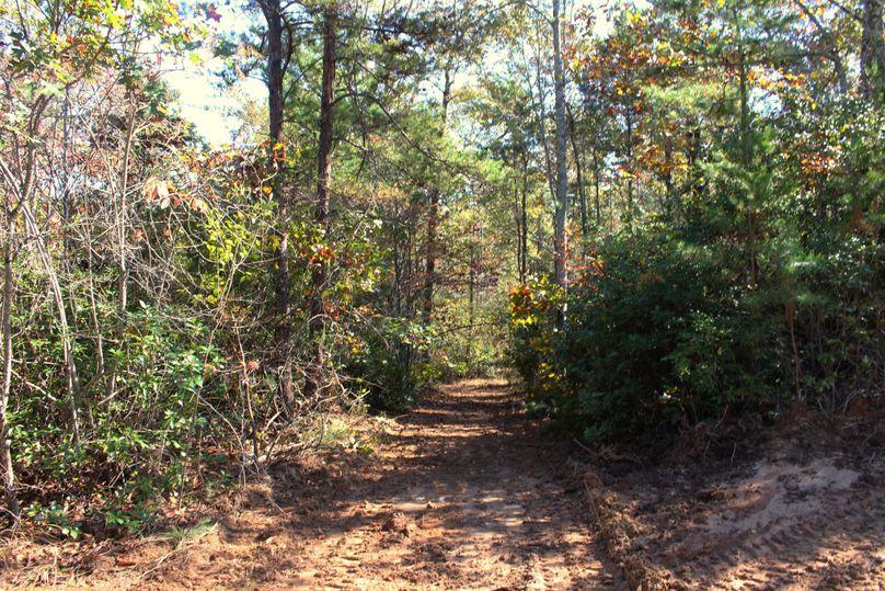 027 trail 6