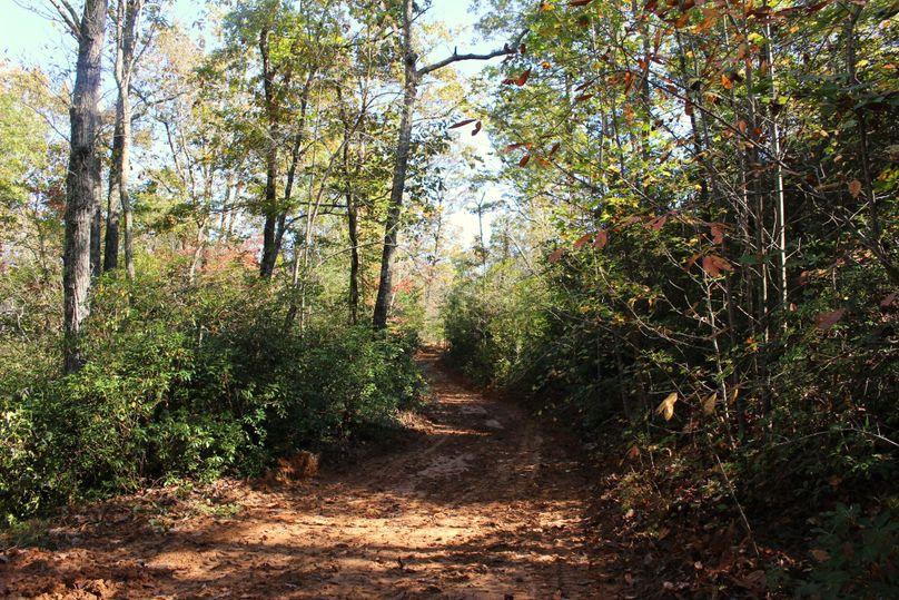 025 trail 4