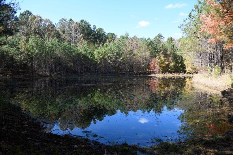 (12) pond