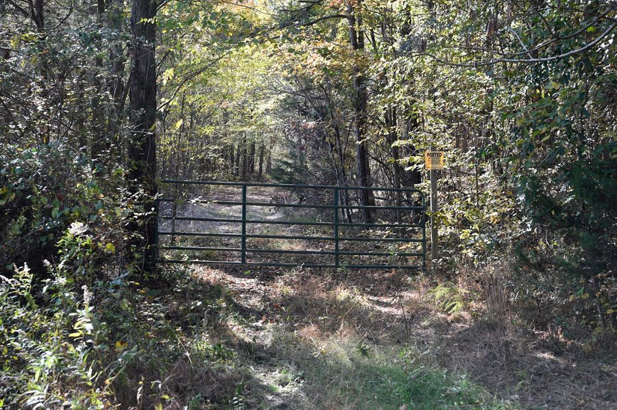 (2) front gate