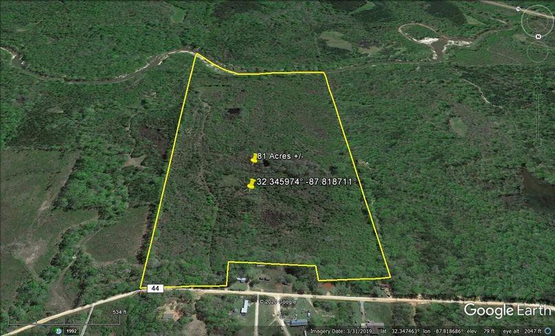 Aerial 4 approx. 81 acres marengo county, al