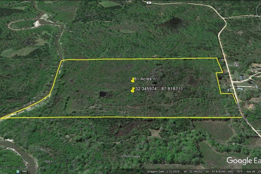 Aerial 5 approx. 81 acres marengo county, al