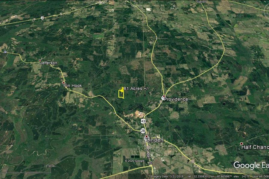 Aerial 7 approx. 81 acres marengo county, al