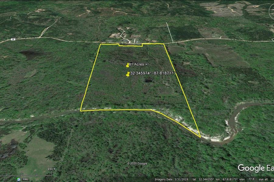 Aerial 2 approx. 81 acres marengo county, al