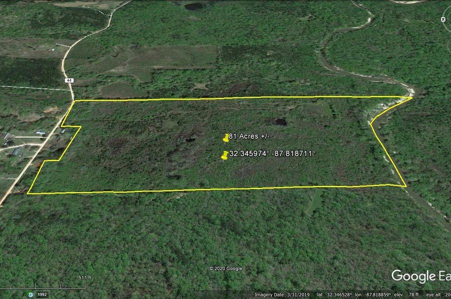 Aerial 3 approx. 81 acres marengo county, al