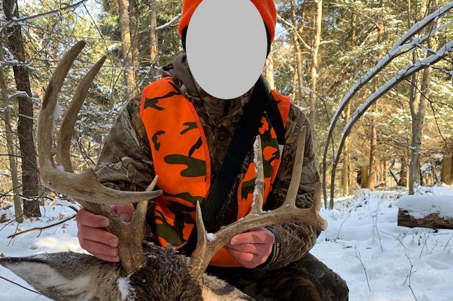 Schreiber deer 5