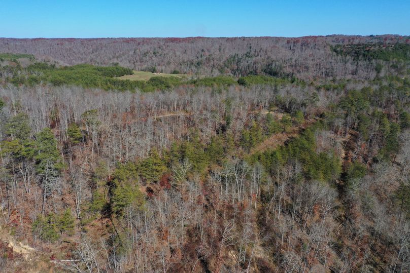 001 aerial drone shot from the center of the property looking to the north