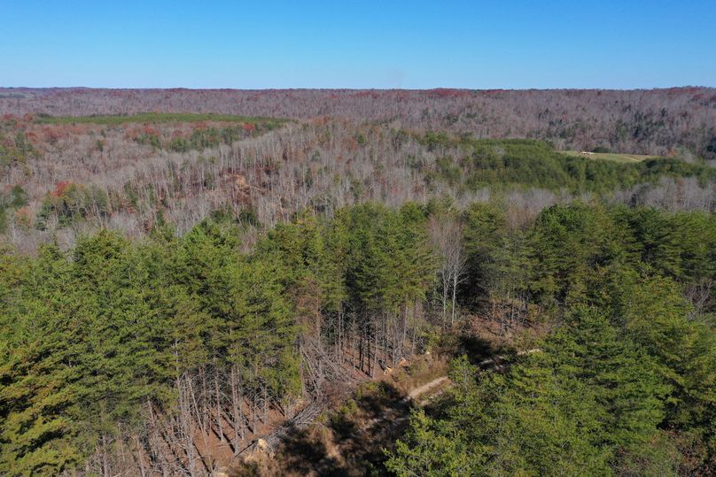 007 aerial drone shot from the east edge of the property looking northeast