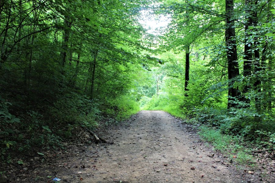 002 road leading into the property
