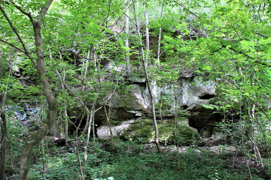 005 huge rock feature along the south boundary of the property