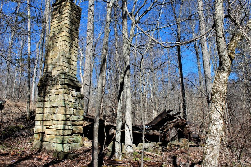 003 remnants of old homestead, chimney is in remarkable condition