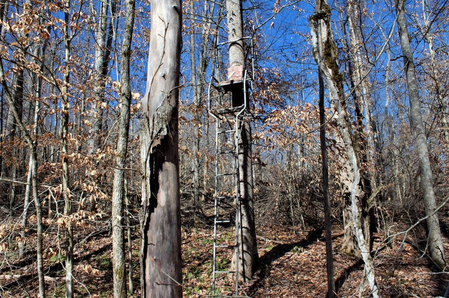 006 ladder stand set up for those big mountain bruisers