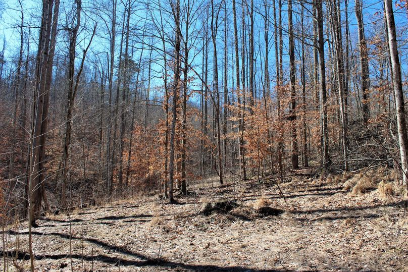 012 another of the flat areas for cabin or food plots