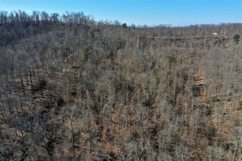 014 drone shot from the center of the property looking west