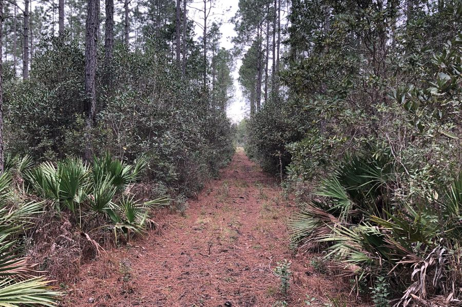 15. east-west interior trail